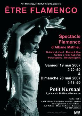 Affiche etre flamenco