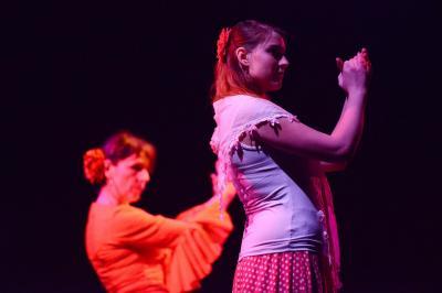 Ecole de flamenco