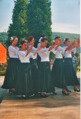 Mjc palente flamenco novillars 2002